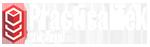 practicaltek logo